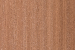Sapele-White Wash
