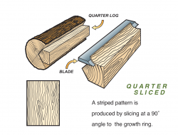 Quarter Sliced