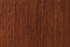 Bamboo-Auburn
