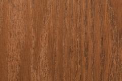 Oak Red-Harmony